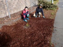 Volunteers in a mulched bed at Tully and Glen Angus